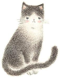 cat_1e